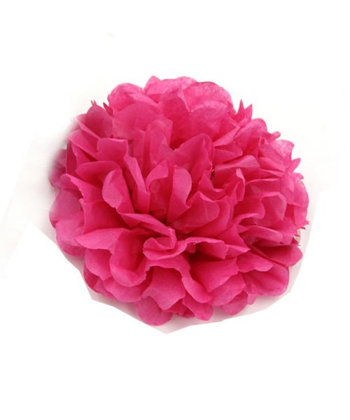 Pompon Rose Fushia 20cm