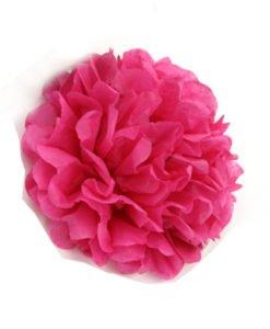 Pompon Rose Fushia 25cm