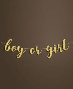 Banderole boy or girl Baby Shower Neutre