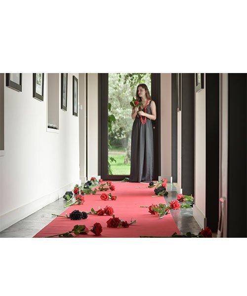 tapis rouge pour all e de c r monie de mariage meilleur prix. Black Bedroom Furniture Sets. Home Design Ideas