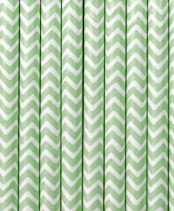 Pailles Chevron Green Mint