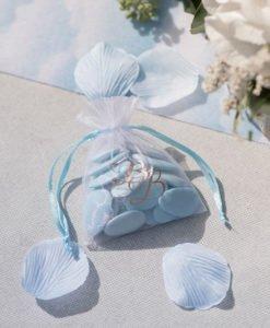 Sachet Organza Cadeau Baby Shower Garçon